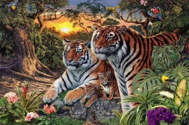 Сколько тигров вы сможете насчитать на этой картинке?