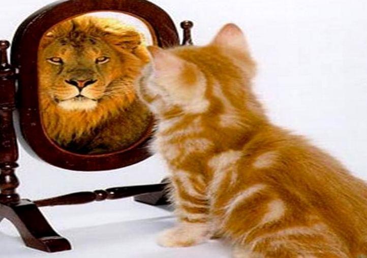 Высокая самооценка — залог успеха